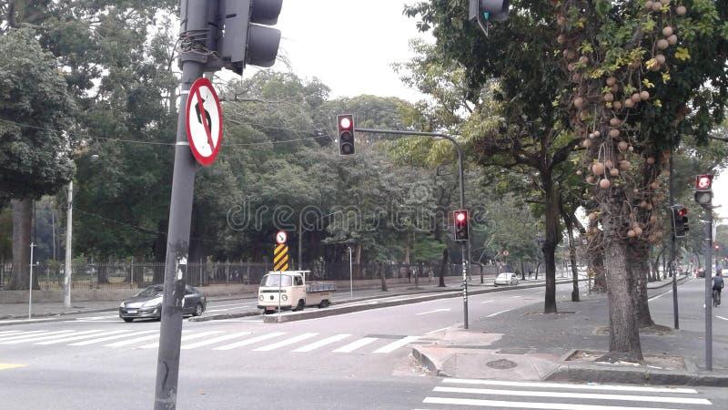 Brasilien - Rio de Janeiro - im Stadtzentrum gelegenes - Passeio-Straße - Teixeira de Freitas Street - Stadtbild - Baumallee stockbild