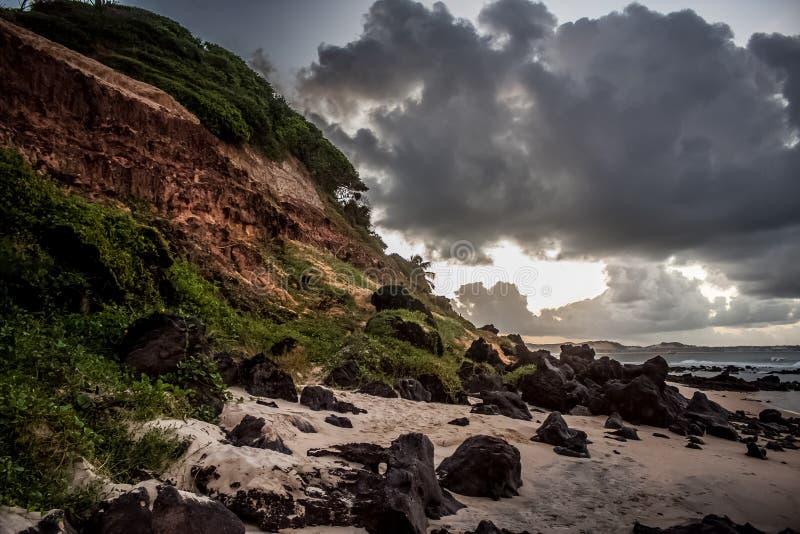 Brasilien vaggar fotografering för bildbyråer