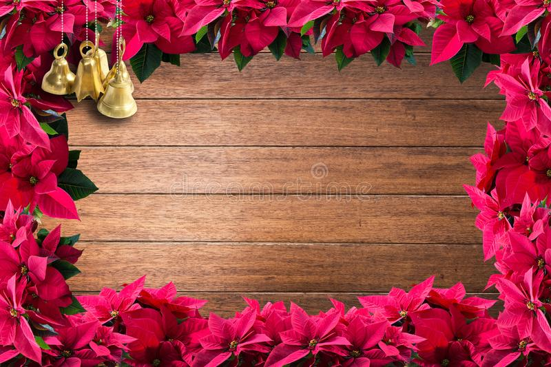 Brass bells and red christmas poinsettia flower frame. On shiny classy wood plank background texture surface stock photography