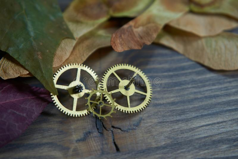 Brass cog wheels, autumn leaves on wood background stock images