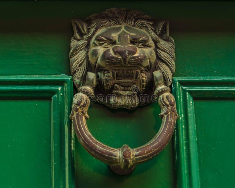 Brass knocker in the shape of lion head. On a green door stock photos