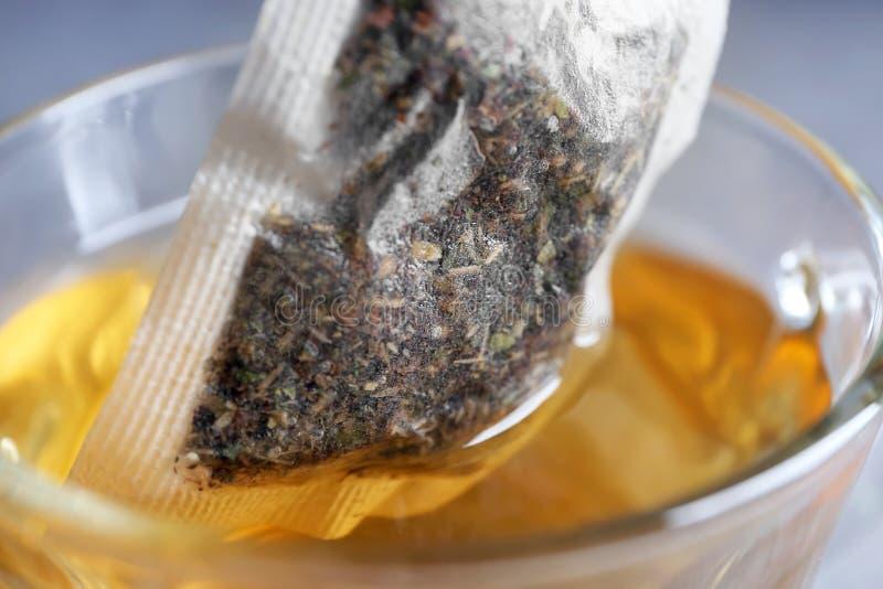 Brassage du thé chaud dans la tasse en verre, plan rapproché images libres de droits