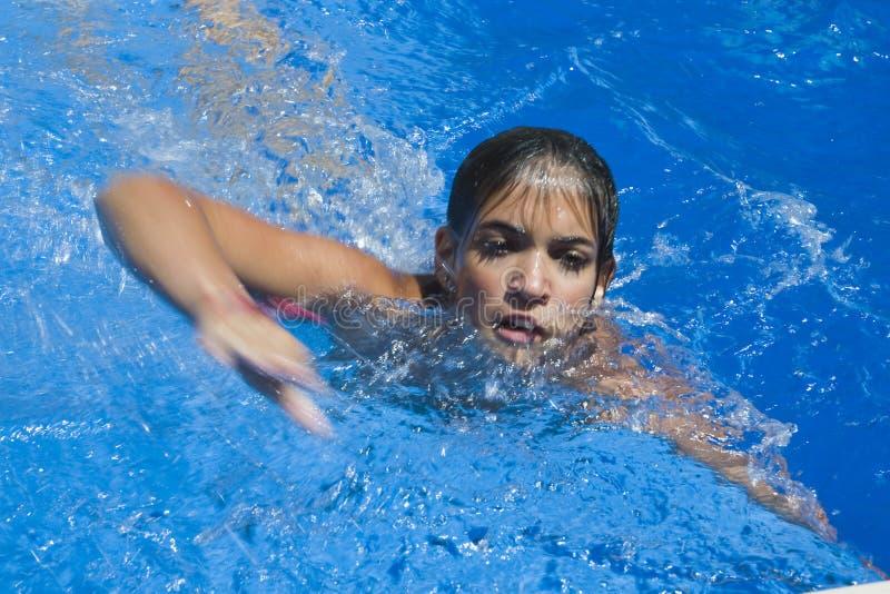 Brasse de natation de fille dans la piscine, images stock