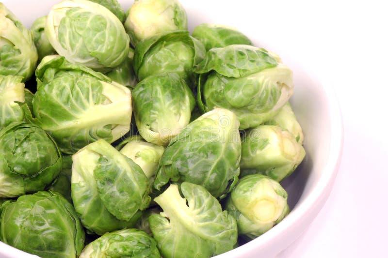 Download Brassica Oleracea Gemmifera Gruppe Stockbild - Bild von frisch, gesund: 47100053