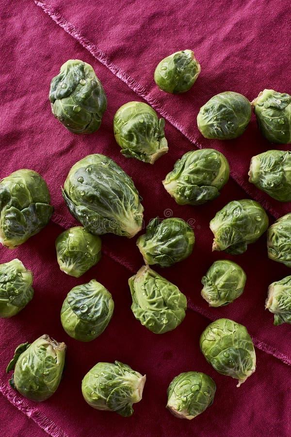 Brassica oleracea orgánica lavada fresca var de las coles de Bruselas gemm foto de archivo