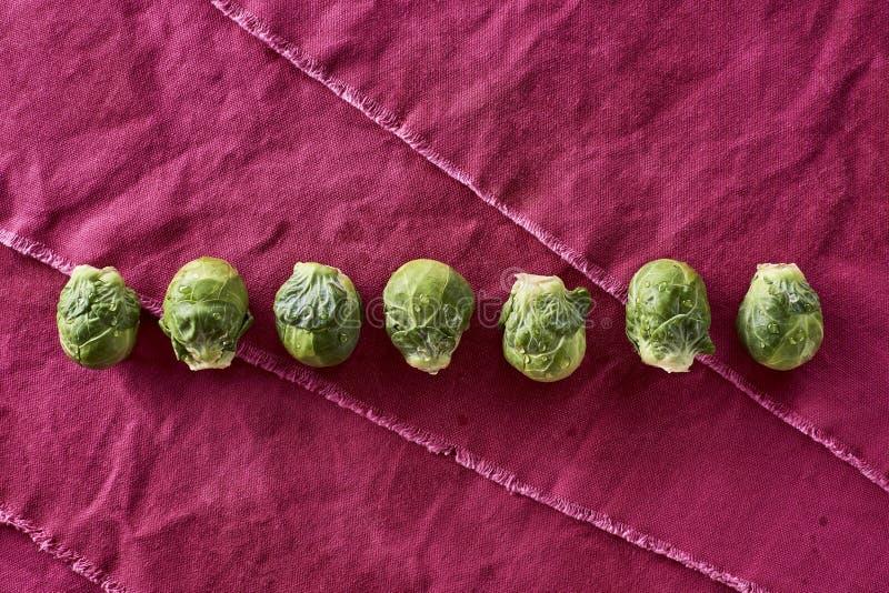 Brassica Oleracea orgânica lavada fresca var das couves-de-Bruxelas gemm foto de stock royalty free