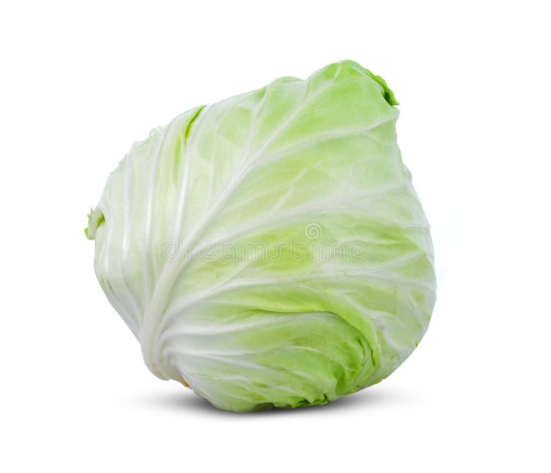 Brassica oleracea variet? del cavolo isolata su fondo bianco fotografie stock libere da diritti