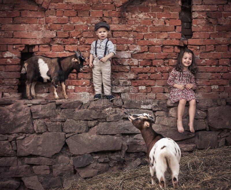 Brat i siostra w agritourism gospodarstwie rolnym obrazy stock