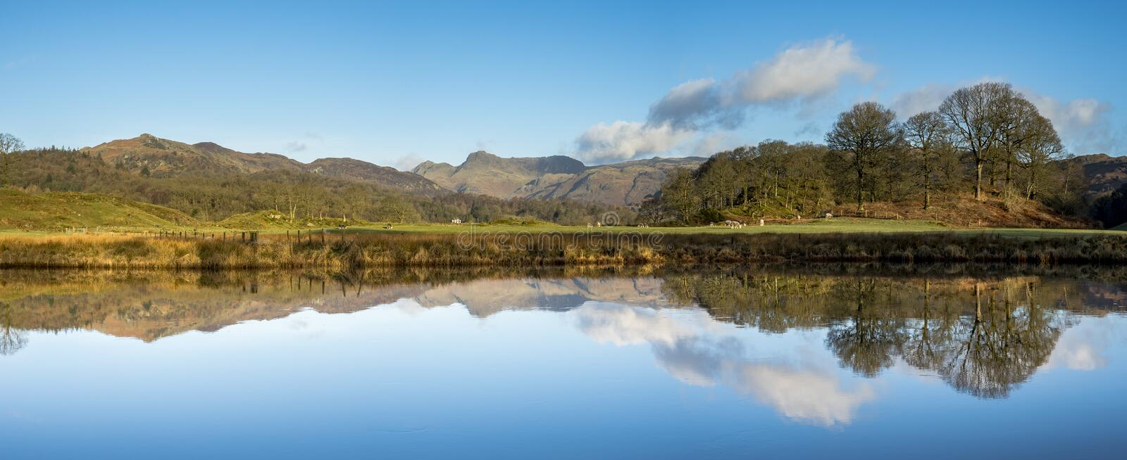 Brathy Reflections stock images