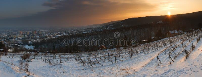 bratislava над заходом солнца Словакии стоковые изображения rf