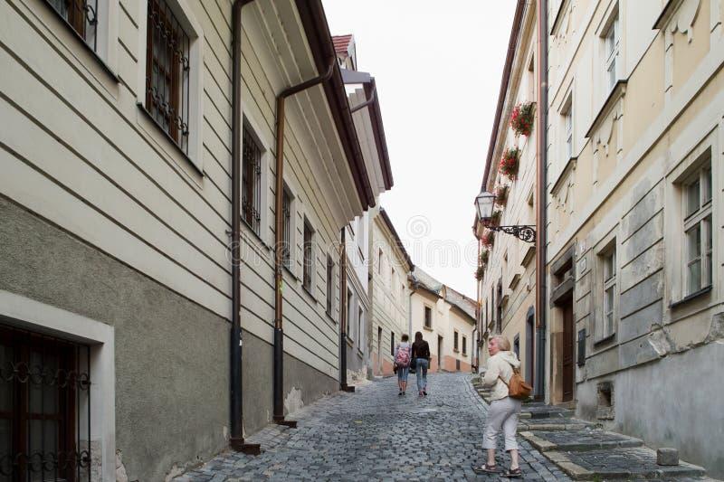 Bratislava arkitektur royaltyfria bilder