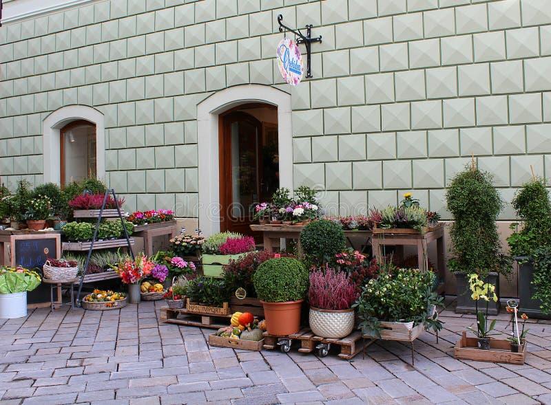 My neighbourhood, autumn decoration of a florist´s stock image