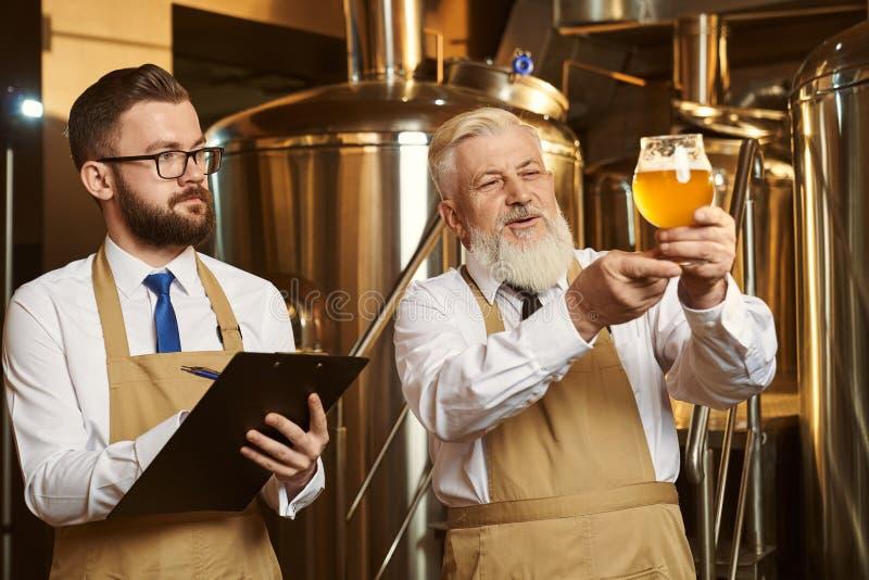 Brauer, die Bierglas, analysierend betrachten und schreiben lizenzfreie stockfotos
