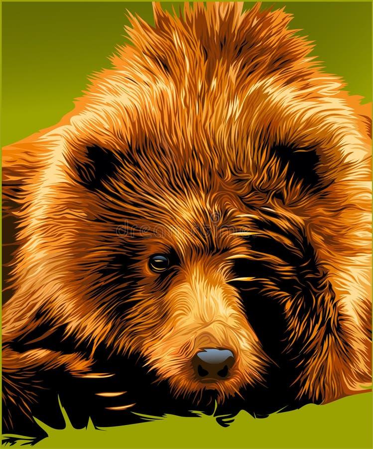 Braunbär-Gesicht stock abbildung