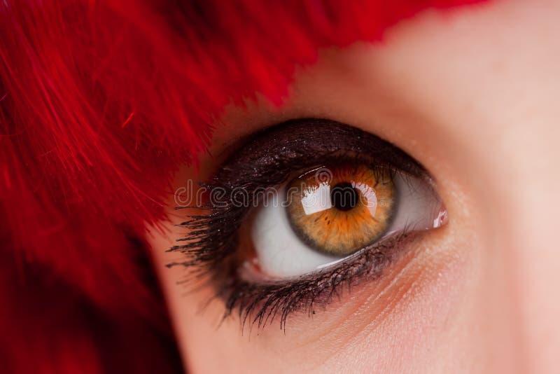 Braune Augen-Nahaufnahme der Frau stockbilder