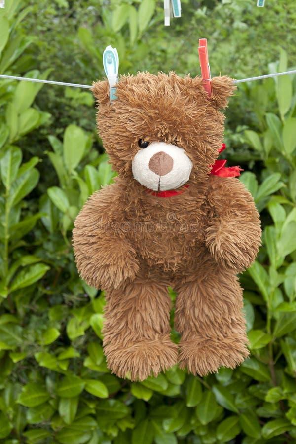 Brauner Teddybär des Spielzeugs, der an der Linie hängt lizenzfreie stockbilder