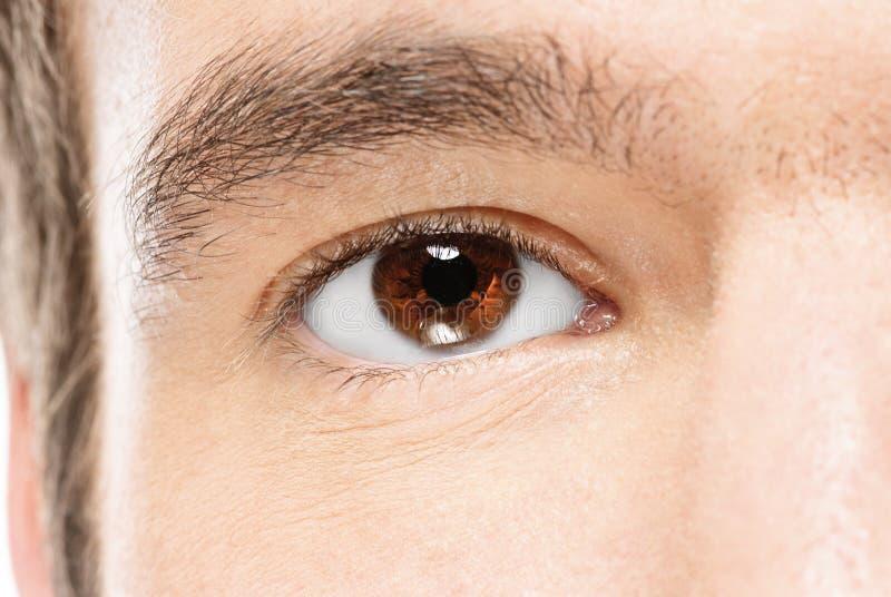 Braunes Auge des Mannes stockfotos