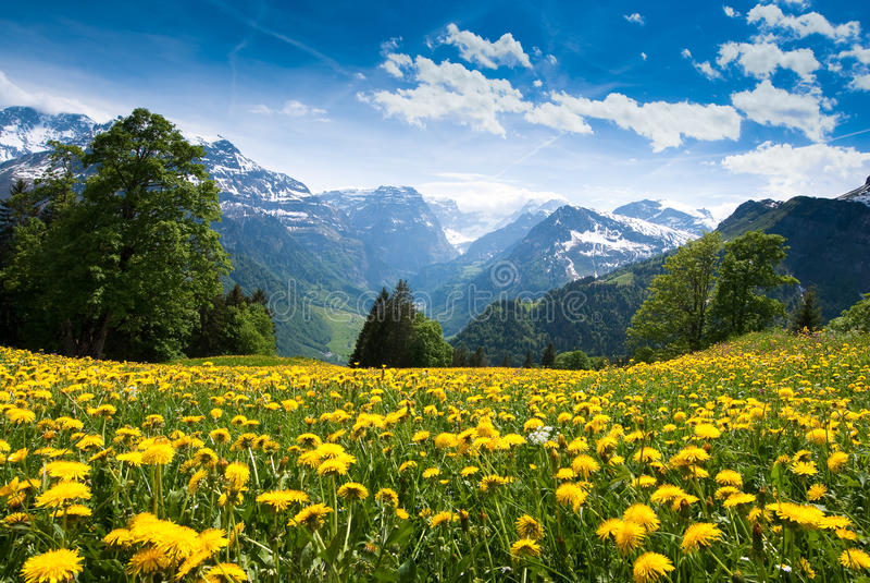 braunwald视图 库存照片