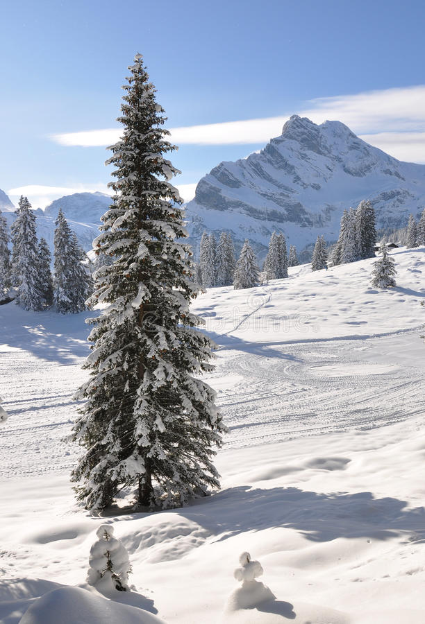 Free Braunwald, Switzerland Royalty Free Stock Images - 12327589