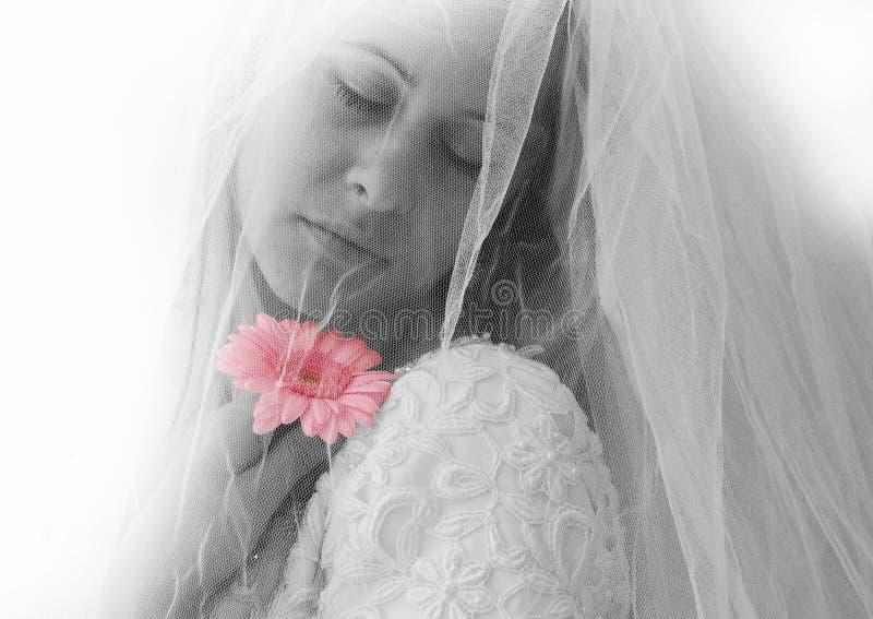 Braut lizenzfreies stockfoto