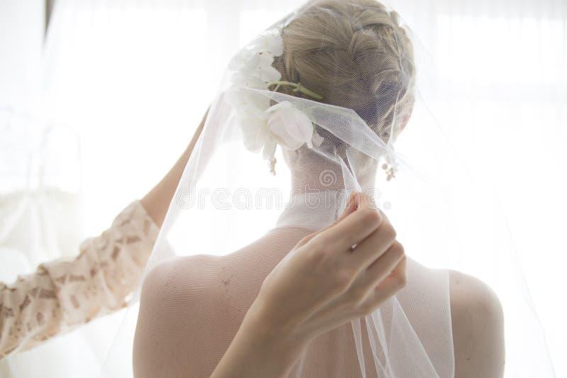 Braut, die einen Schleier trägt lizenzfreies stockfoto