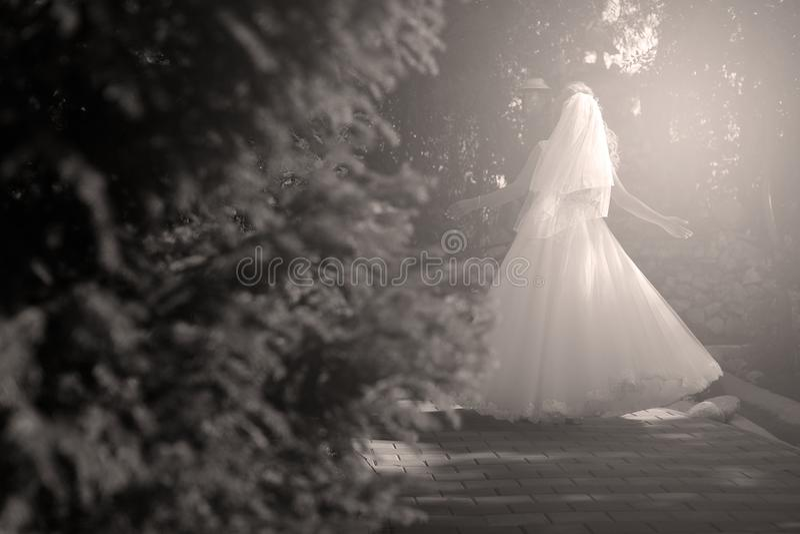 Braut, die Pirouette im Park tut stockbild