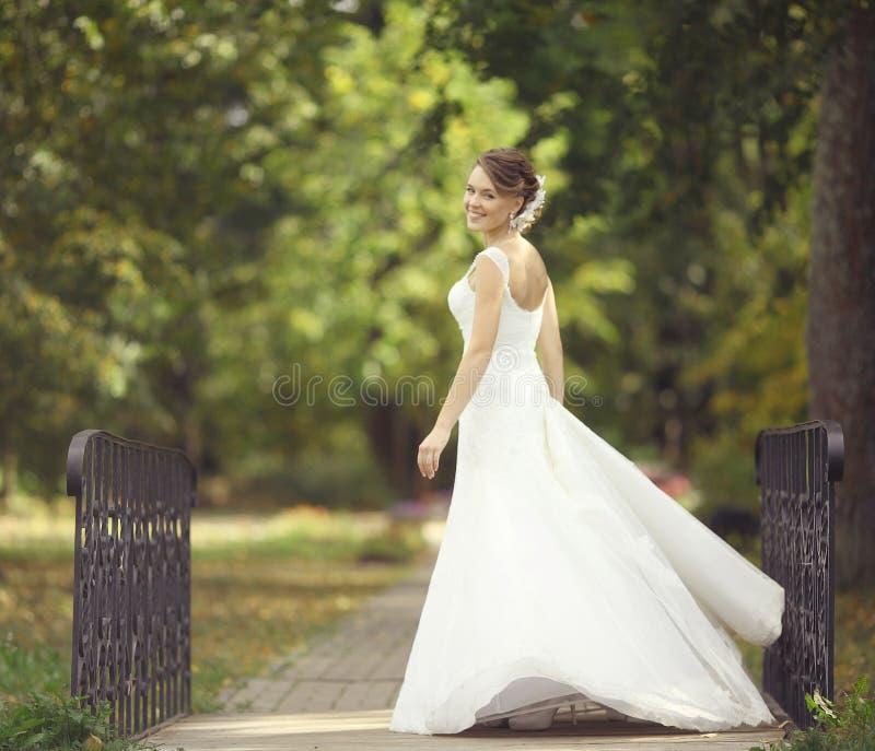 Braut an einer Hochzeit in einem weißen Kleid lizenzfreies stockfoto