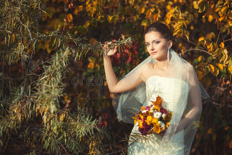 Braut im Park lizenzfreie stockfotos