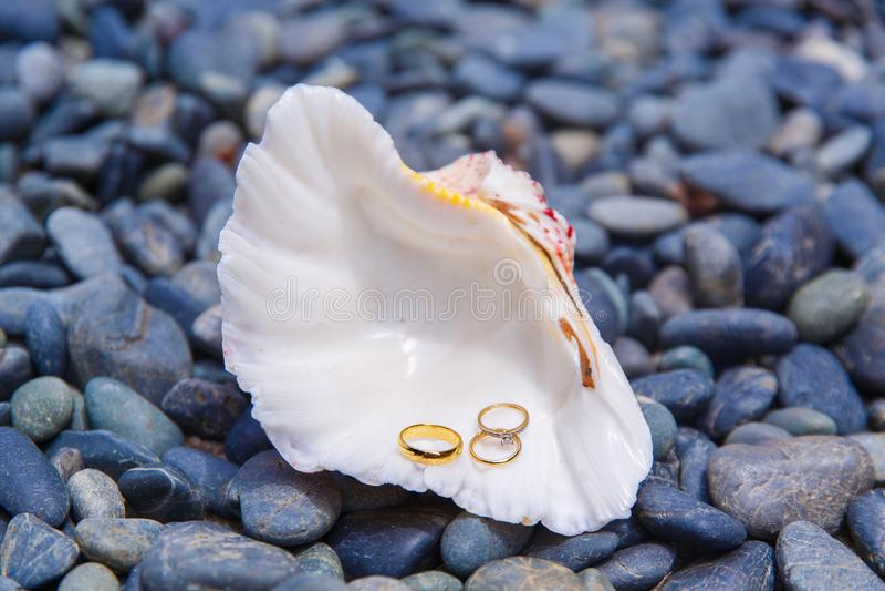Braut im weißen Kleid Eine weiße Muschel mit Hochzeit und engagemen stockbild