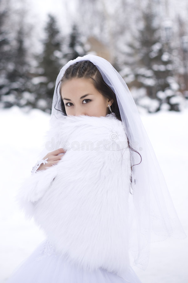 Braut im Winterwald lizenzfreie stockfotografie