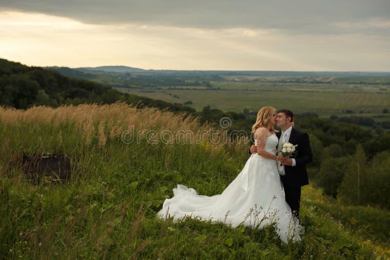 Braut küsst das Gesicht des Bräutigams zart, während sie auf einem grünen h stehen lizenzfreies stockfoto