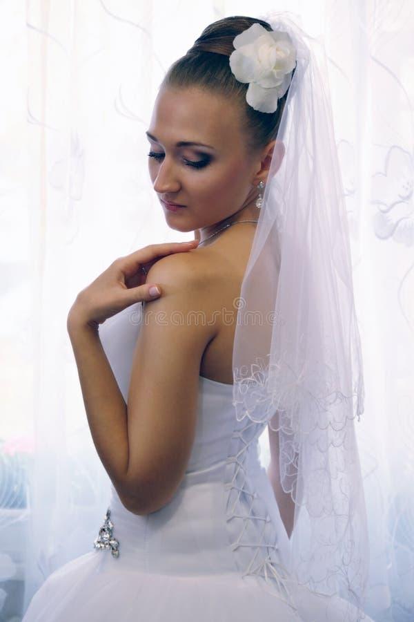 Download Braut mit einer Rose stockbild. Bild von haar, fashion - 27728469