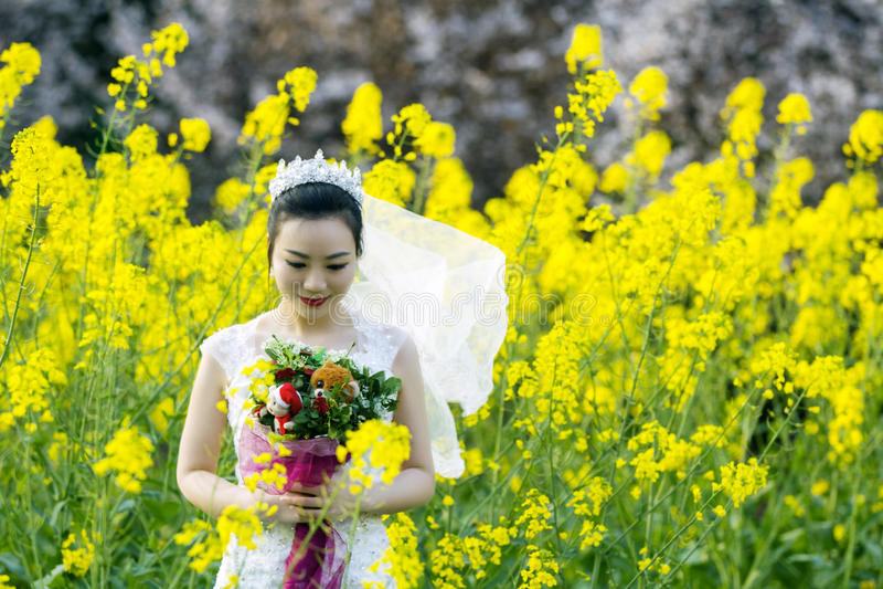 Braut portraint mit weißem Hochzeitskleid auf dem Coleblumengebiet stockfotografie