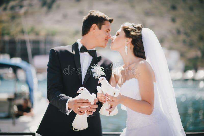Braut und Bräutigam, die mit weißen Hochzeitstauben aufwerfen stockfotografie