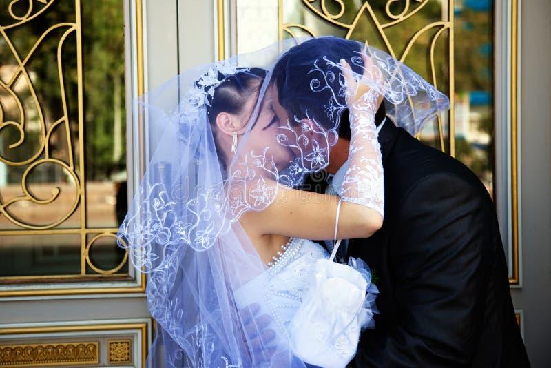 Braut und Bräutigam, die unter Schleier küssen lizenzfreie stockbilder