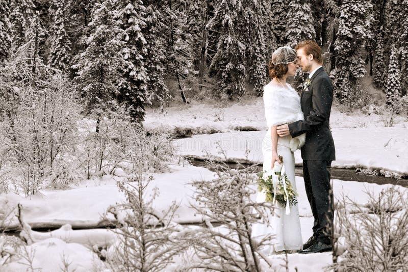 Braut und Bräutigam draußen lizenzfreie stockbilder