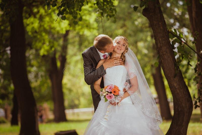 Braut und Bräutigam in einem Parkküssen lizenzfreies stockbild