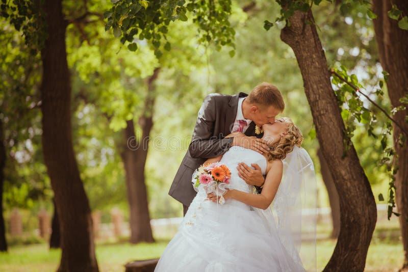 Braut und Bräutigam in einem Parkküssen lizenzfreie stockfotos
