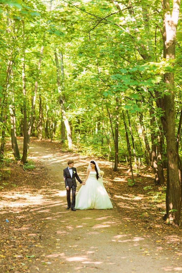 Braut und Bräutigam am Hochzeitstag draußen gehend auf Frühlingsnatur Brautpaare, glückliche Jungvermähltenfrau und Mannumfassung lizenzfreie stockfotos