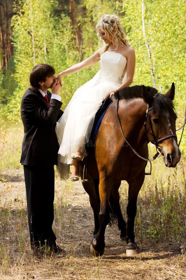 Braut und Bräutigam mit Pferden lizenzfreies stockfoto