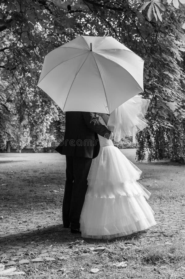 Braut und Bräutigam mit weißem Regenschirm lizenzfreies stockbild