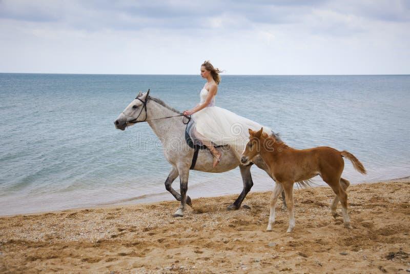 Braut und Pferde auf dem Strand lizenzfreie stockfotografie