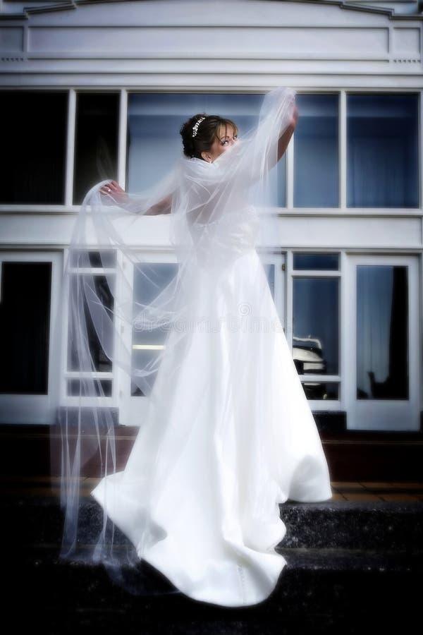 Braut und Schleier lizenzfreies stockfoto