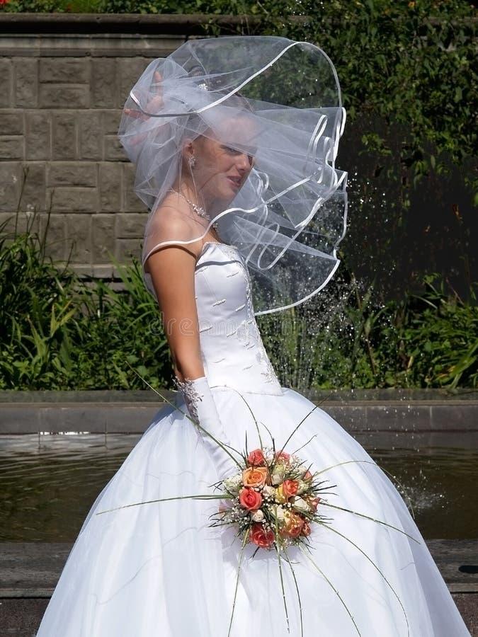 Braut unter Schleier stockfotos