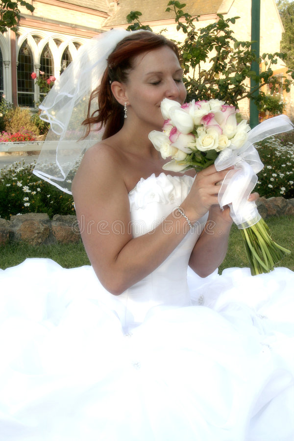 Brautblüte stockbild