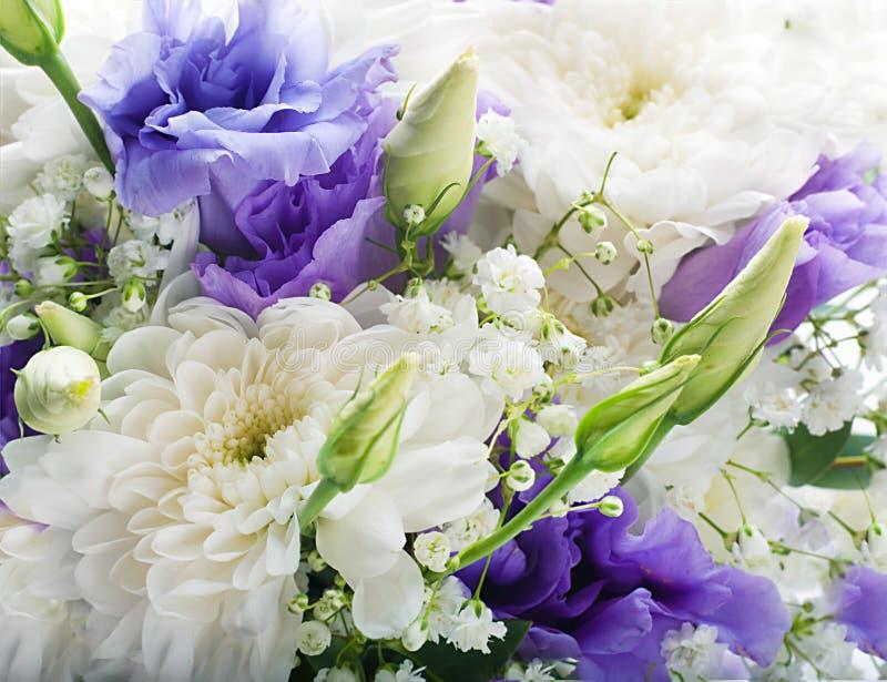 Download Brautblumenstrauß stockbild. Bild von weiß, liebe, purpurrot - 27734709