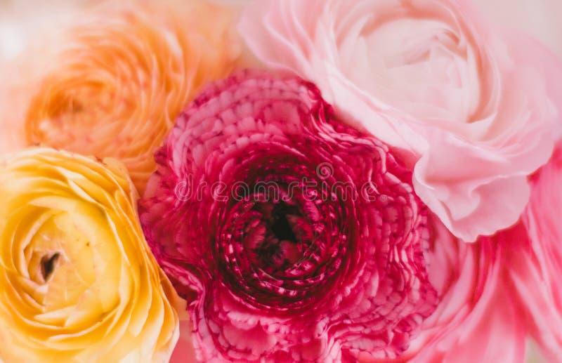 Brautblumenstrauß der rosafarbenen Blumen - Hochzeit, Feiertag und Blumengarten angeredetes Konzept lizenzfreie stockbilder