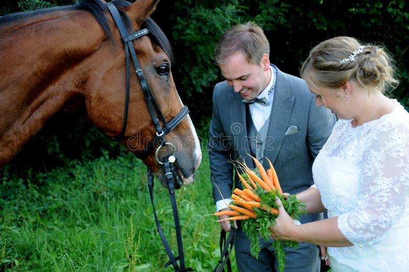 Brautblumenstrauß für das Pferd lizenzfreie stockfotos