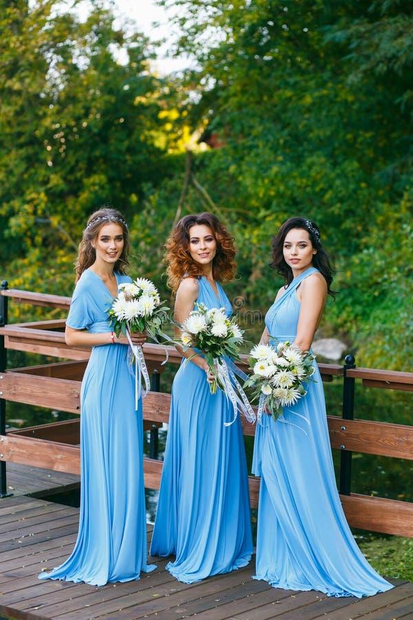 Brautjungfern im Park lizenzfreie stockbilder