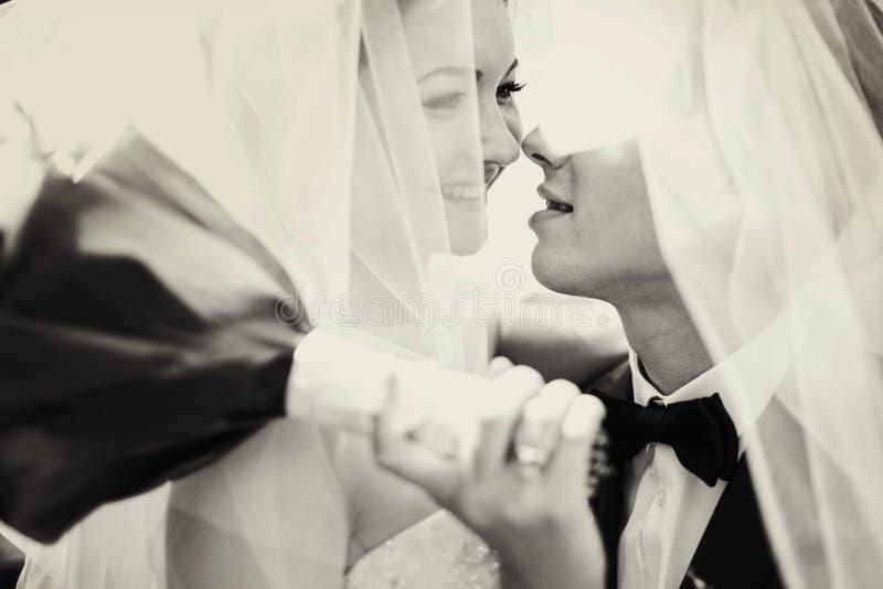 Brautlächeln, während Bräutigam versucht, ihre Stellung unter einem Schleier zu küssen lizenzfreies stockfoto